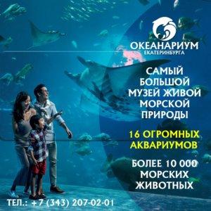 В Екатеринбурге открывается первый на Урале океанариум