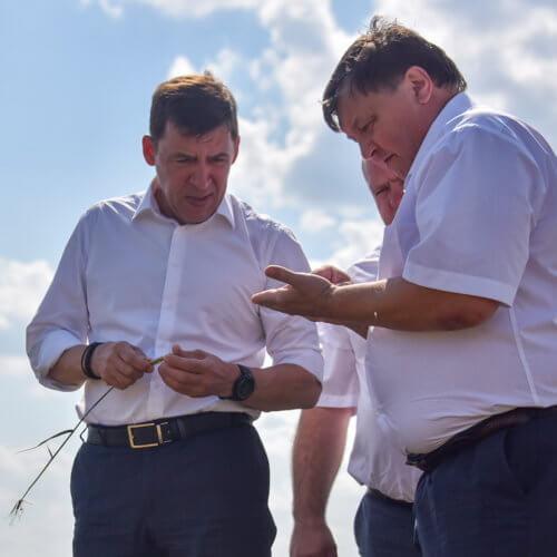 Евгений Куйвашев: сельхозпредприятия потеряли четверть урожая, ущерб превысил 4 млр рублей